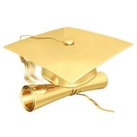 Логотип Институт довузовского образования
