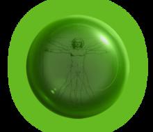 Логотип Кафедра медицинской физики
